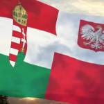 magyar lengyel lobogó